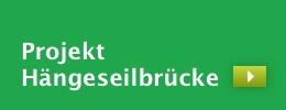 Projekt Hängebrücke